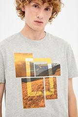 Springfield Camiseta manga corta national geographic gris