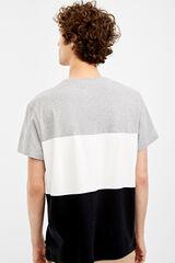 Springfield Camiseta manga corta block color gris