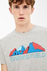Springfield Camiseta manga corta springfield montaña gris