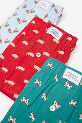 Springfield Pack 3 cuecas tecido animais azul