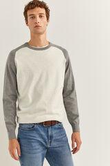 Springfield Jersey algodón gris