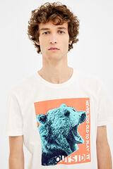 Springfield Camiseta manga corta oso crudo